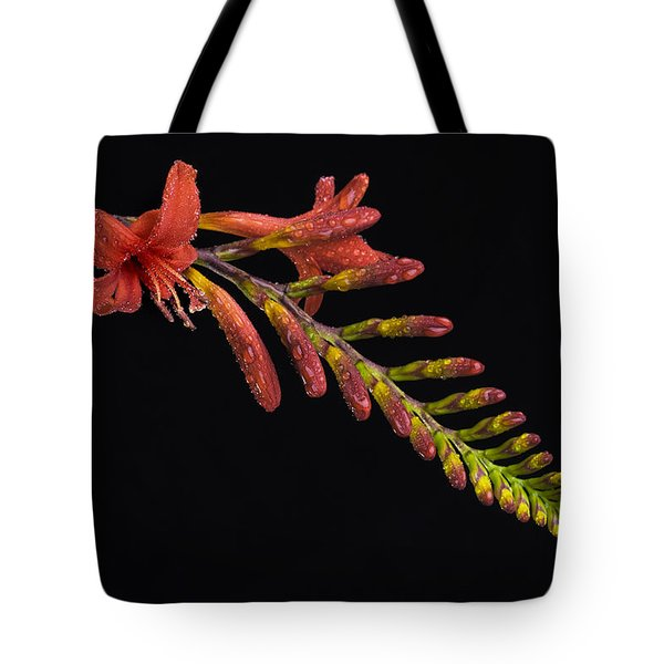 Fire And Water Tote Bag by Trevor Chriss