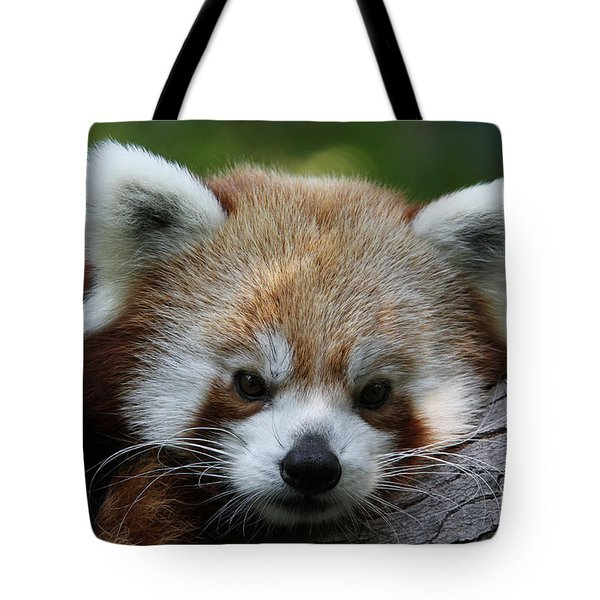 Tote Bag featuring the photograph Fire Fox by Judy Whitton