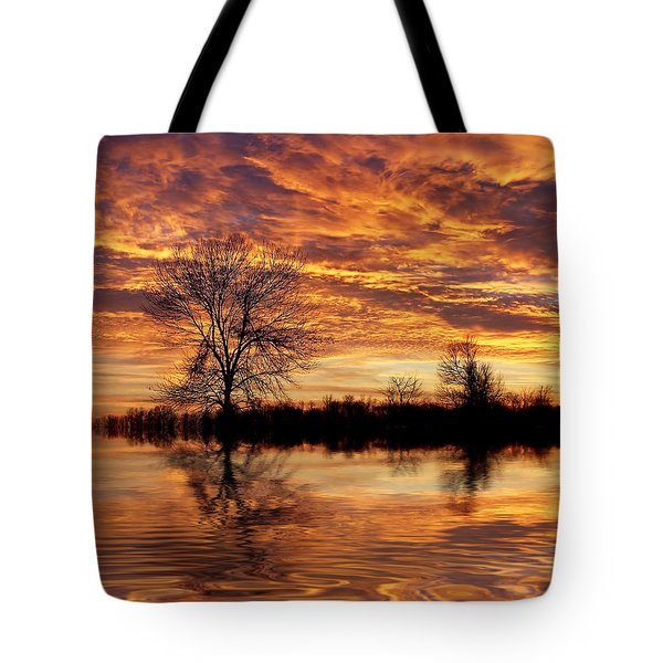 Fire Painters In The Sky Tote Bag