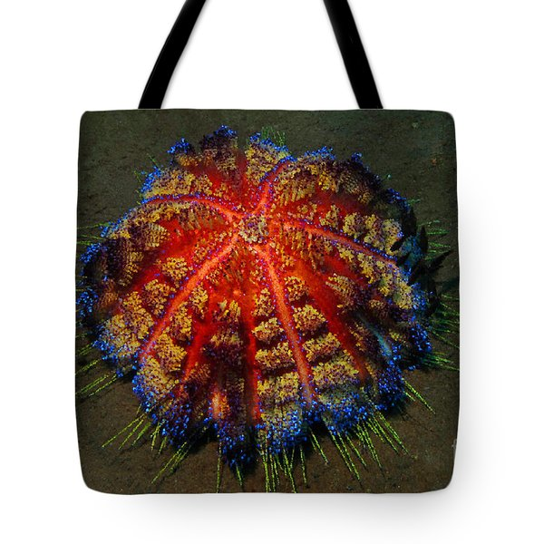 Tote Bag featuring the photograph Fire Sea Urchin by Sergey Lukashin
