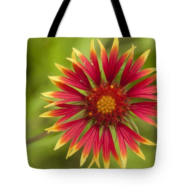 Firewheel Tote Bag