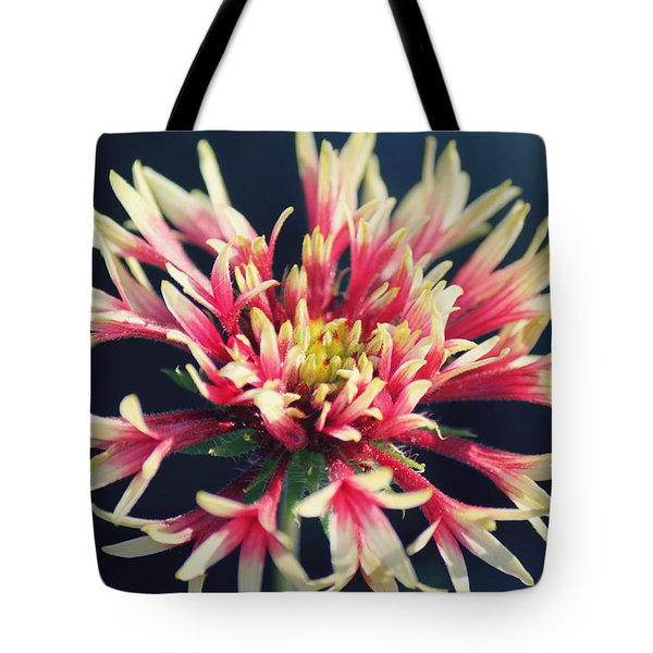 Firework Blooms Tote Bag by Melanie Lankford Photography