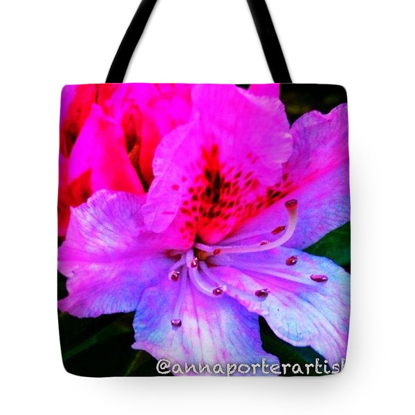 First Blush - The First Bloom On My Tote Bag