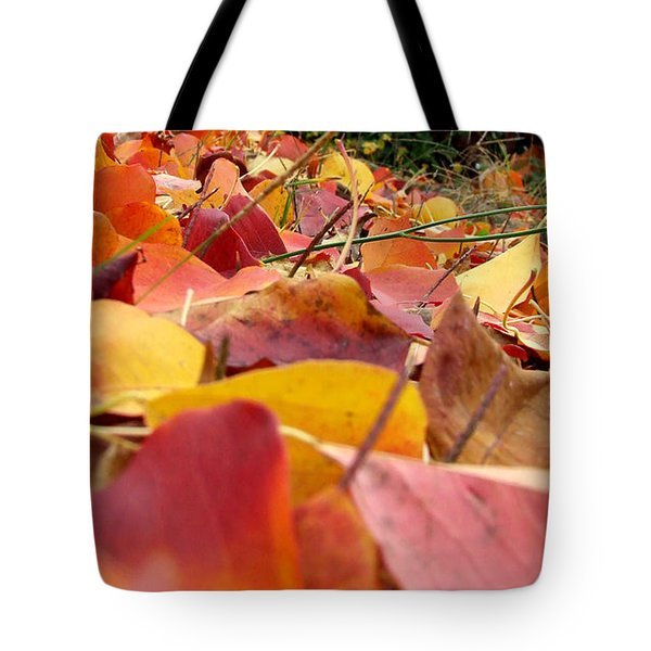 Tote Bag featuring the photograph First Day Of Fall by Andrea Anderegg