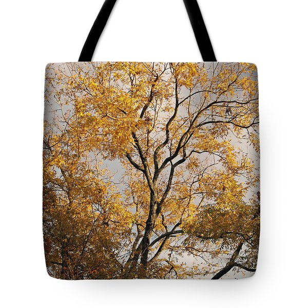 First Day Of Winter 2 Tote Bag