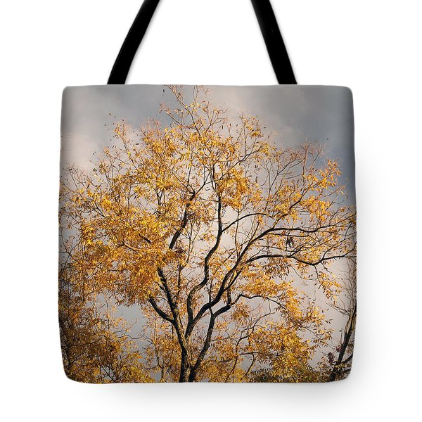 First Day Of Winter 3 Tote Bag