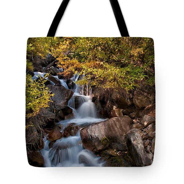 First Falls Tote Bag by Cat Connor