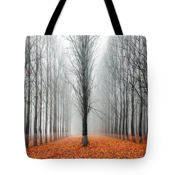 First In The Line Tote Bag by Evgeni Dinev