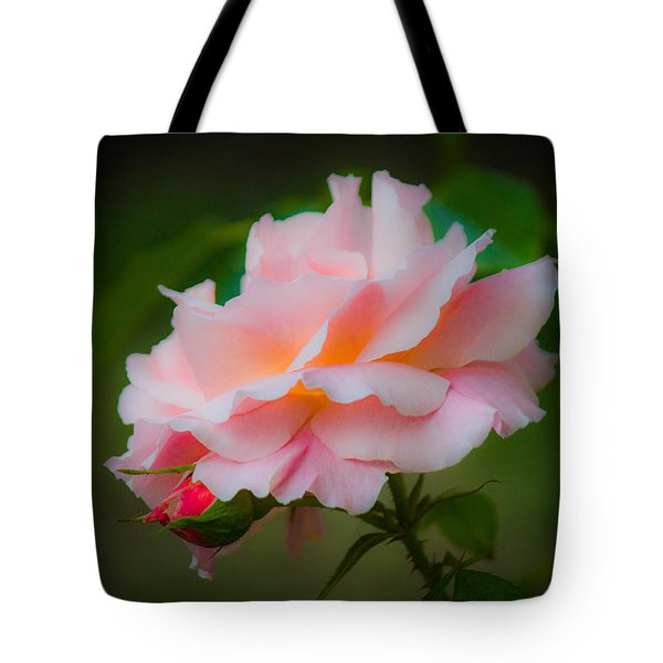 First Kiss Tote Bag by Patricia Babbitt
