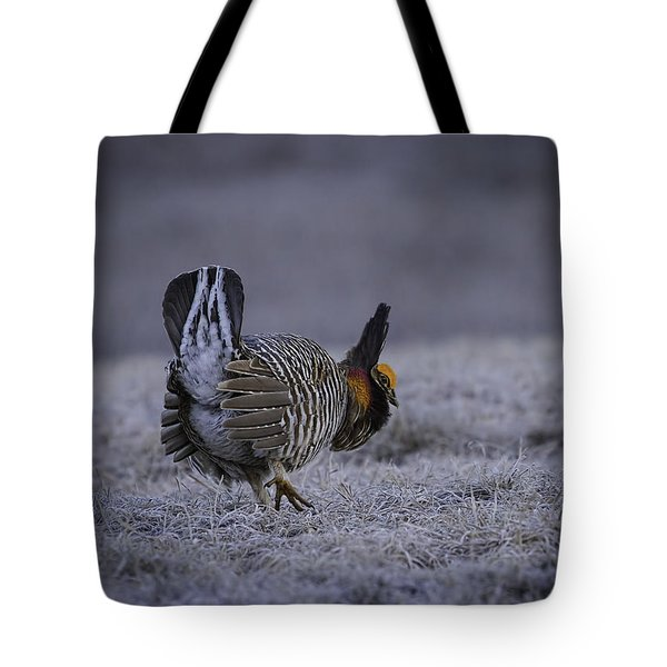 First Light 3 Tote Bag by Thomas Young