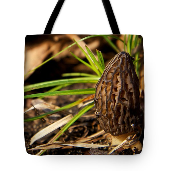 First Morel Mushroom Of Spring Tote Bag