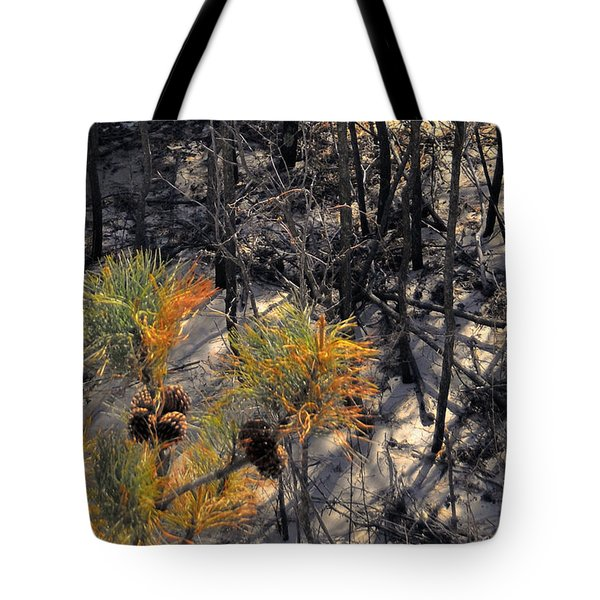 First Sign Of Spring At Cape Henlopen Tote Bag