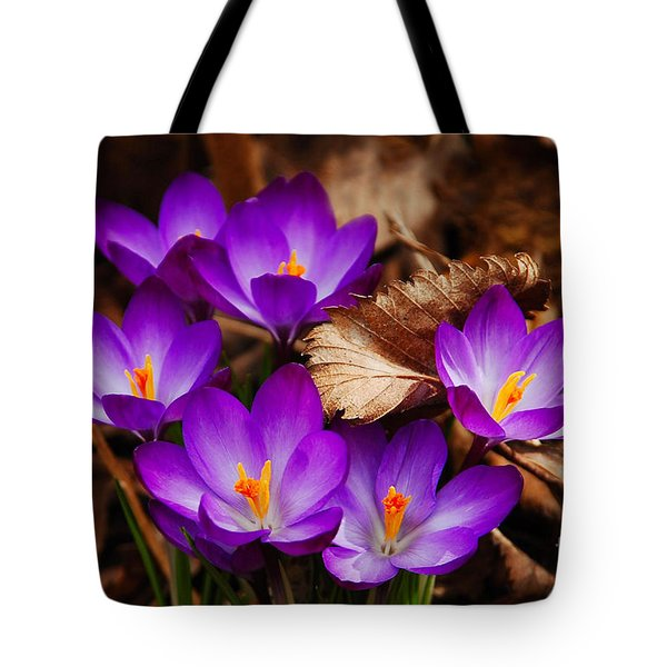 First Signs Of Spring Tote Bag by Elaine Manley