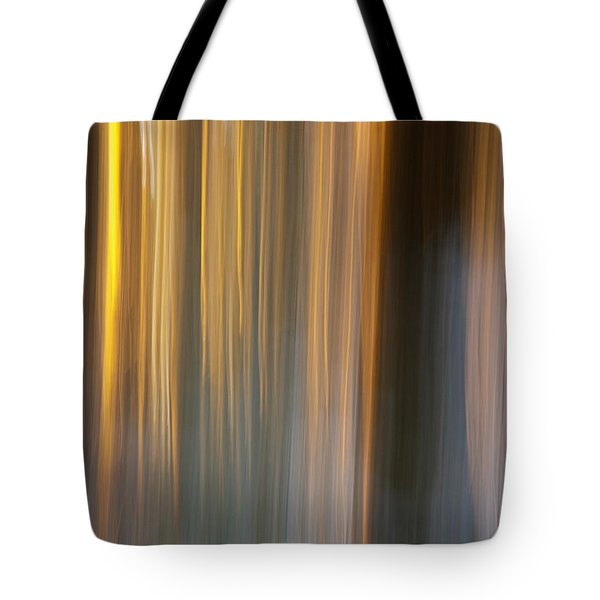 Tote Bag featuring the photograph First Snow In Sunset by Davorin Mance