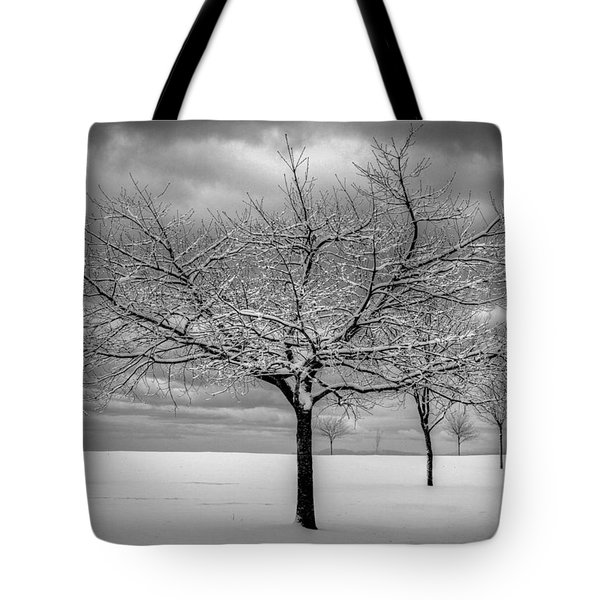First Snow Tote Bag by Randy Hall
