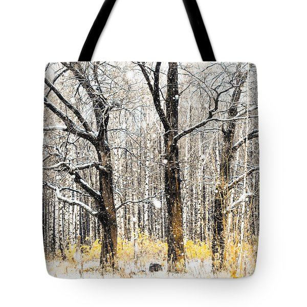 First Snow. Tree Brothers Tote Bag by Jenny Rainbow