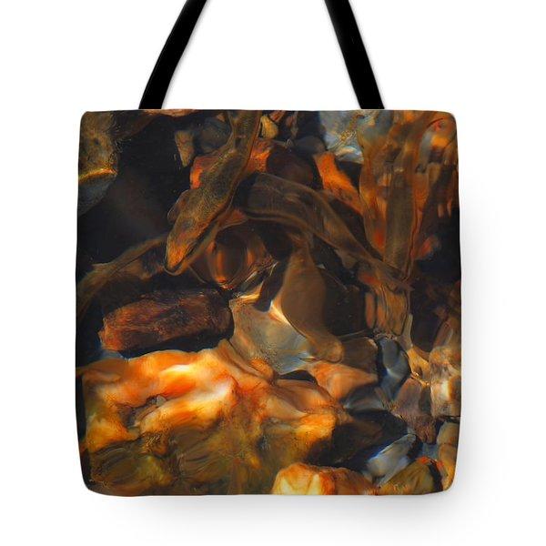 Fish 1 Tote Bag