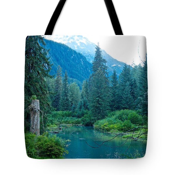Fish Creek In Tongass National Forest By Hyder-ak  Tote Bag