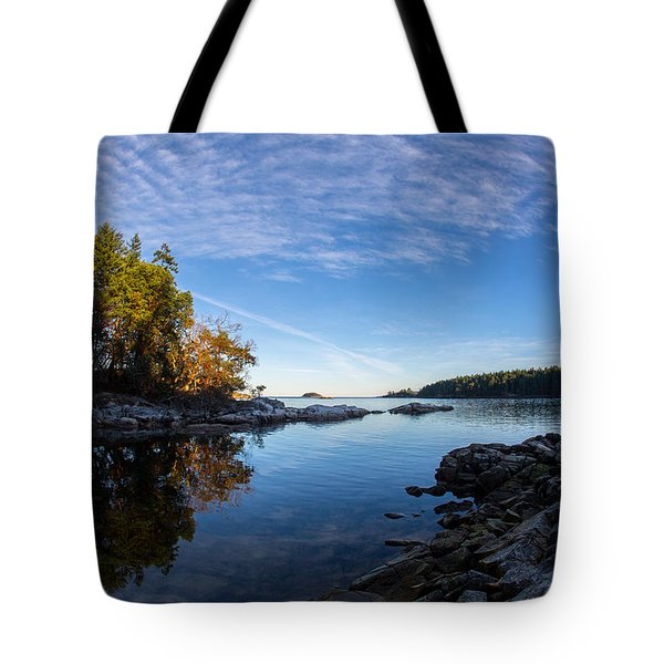 Fish Eye View Tote Bag by Randy Hall