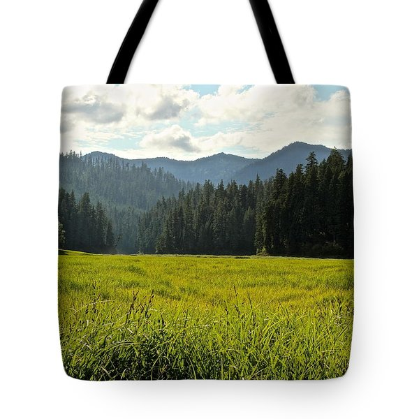 Fish Lake - Open Field Tote Bag