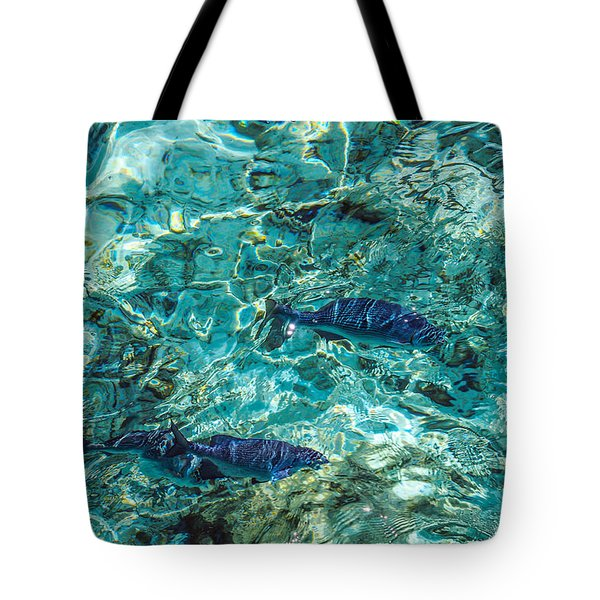 Fishes In The Clear Water. Maldives Tote Bag by Jenny Rainbow