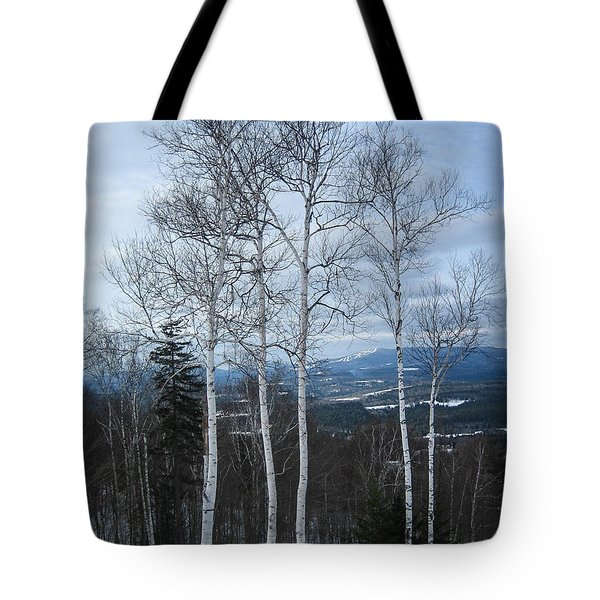 Five Birch Trees Tote Bag