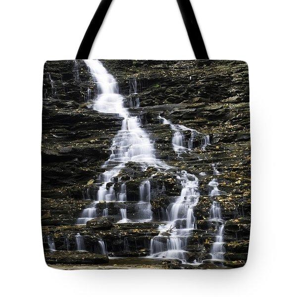 Fl Ricketts Falls Tote Bag