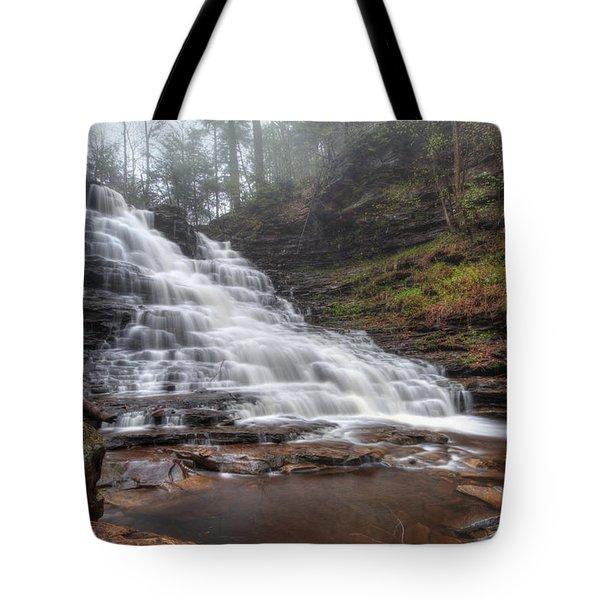 Fl Ricketts Waterfall Tote Bag by Lori Deiter