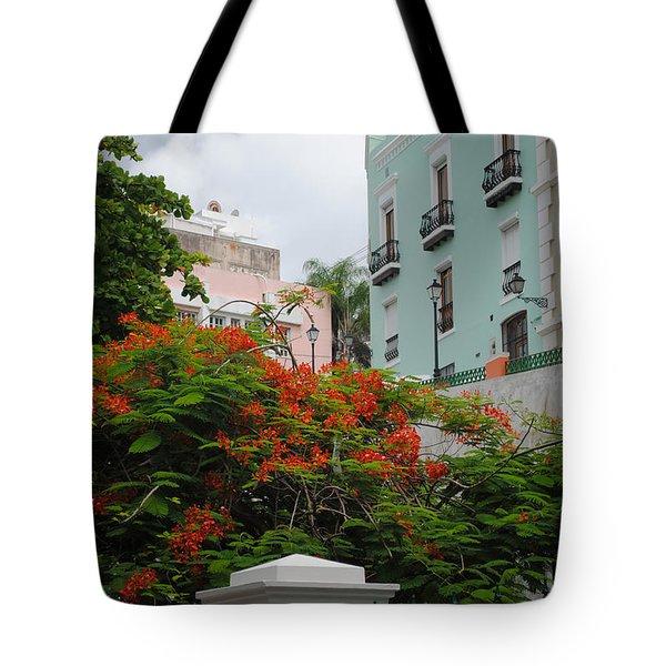 Flamboyan In Park Tote Bag