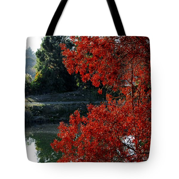 Flame Red Tree Tote Bag