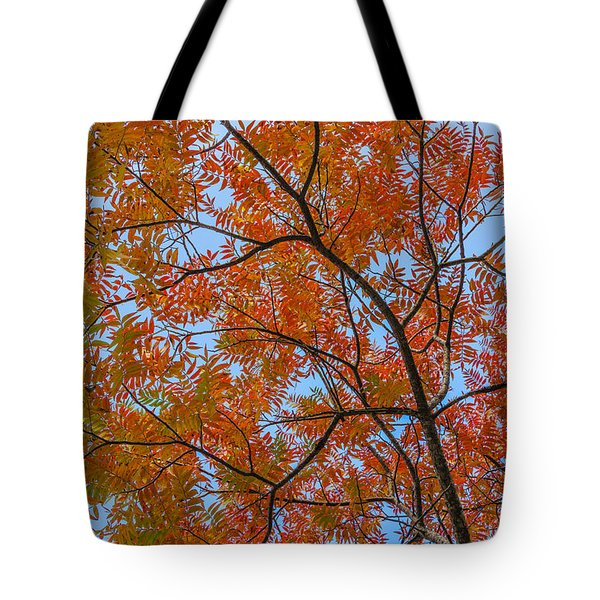Flameleaf Sumac Mostly Changed From Green To Red Tote Bag