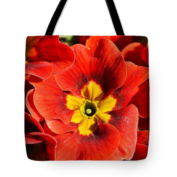 Flamenco Look Tote Bag