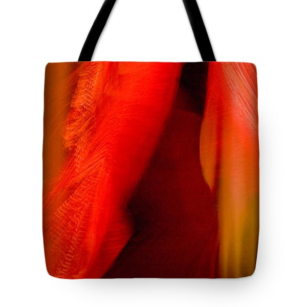 Tote Bag featuring the photograph Flamenco Series 10 by Catherine Sobredo