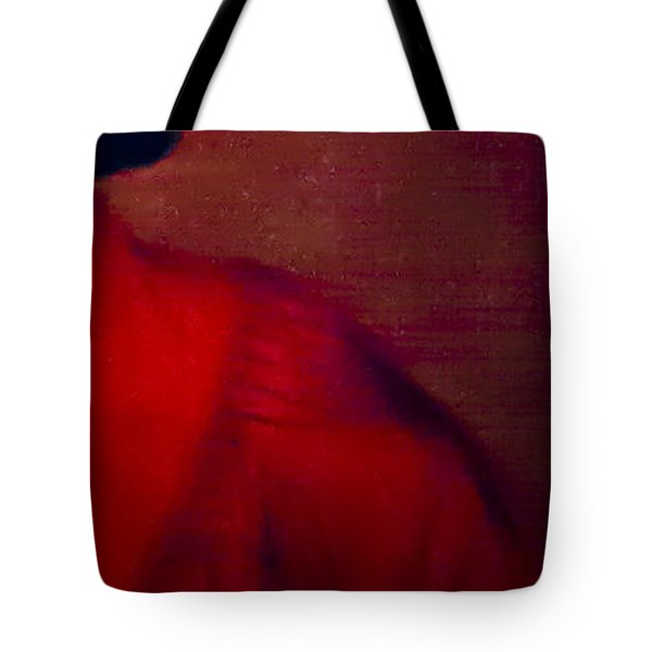 Tote Bag featuring the photograph Flamenco Series 4 by Catherine Sobredo