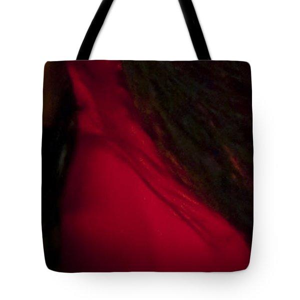 Flamenco Series 6 Tote Bag