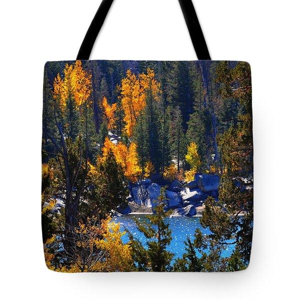 Flaming Aspens Tote Bag