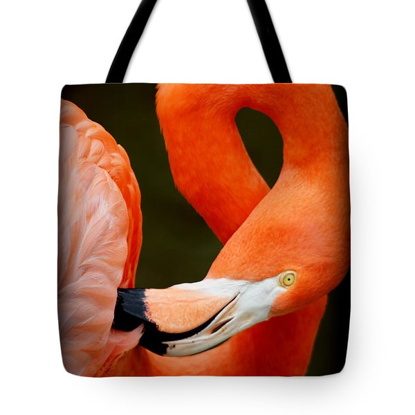 I Need A Chiropractor Tote Bag