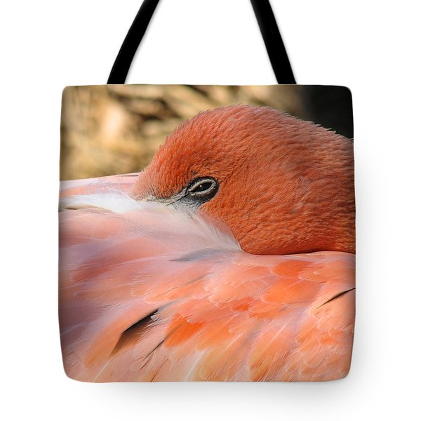 Tote Bag featuring the photograph Flamingo by Eva Kaufman