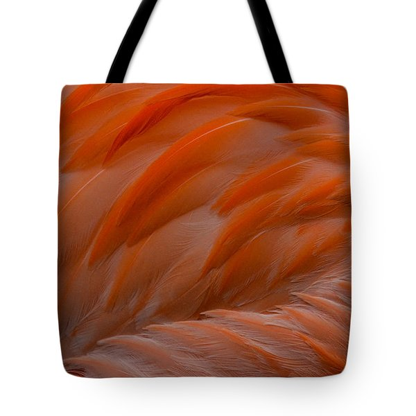 Flamingo Feathers Tote Bag