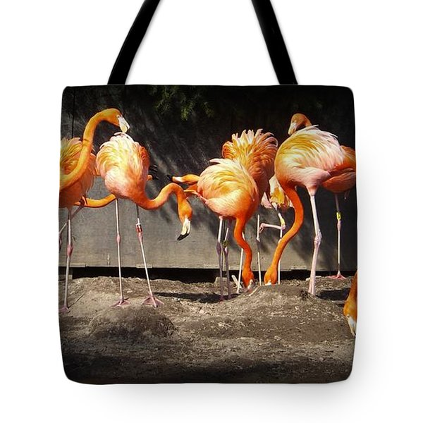 Flamingo Hangout Tote Bag by Sara  Raber