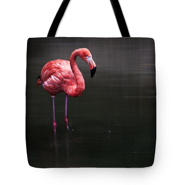 Flamingo  Tote Bag by Hannes Cmarits
