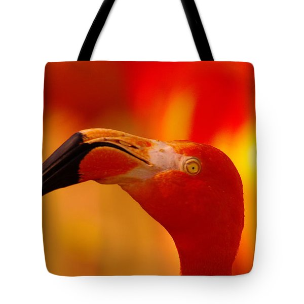 Flamingo  Tote Bag by Jeff Swan