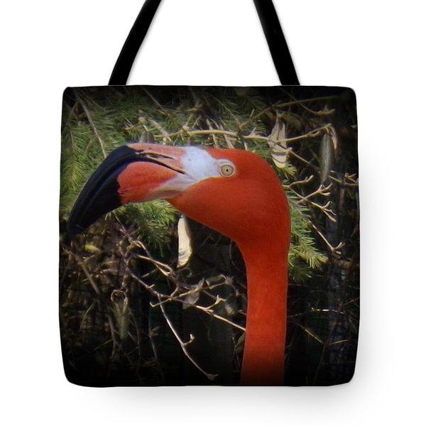 Flamingo Profile Tote Bag by Sara  Raber