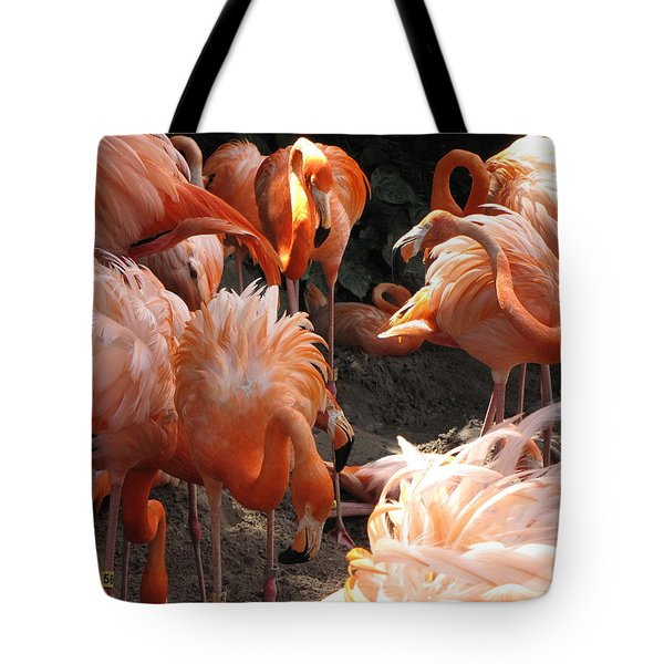 Tote Bag featuring the photograph Flamingos by Beth Vincent
