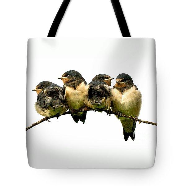 Fledglings Tote Bag