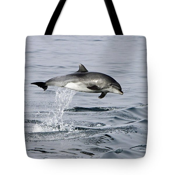 Flight Of The Dolphin Tote Bag