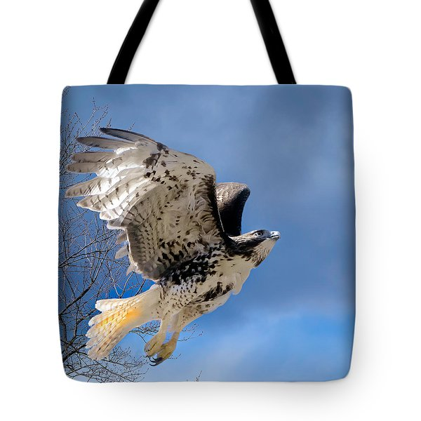 Flight Of The Red Tail Square Tote Bag by Bill Wakeley