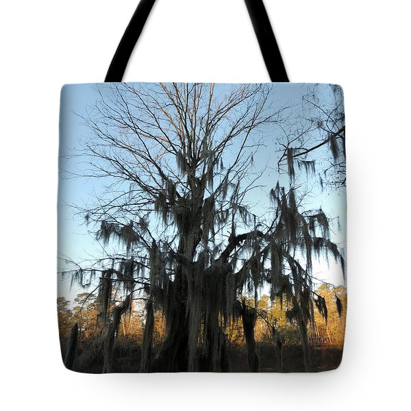 Tote Bag featuring the photograph Flint River 13 by Kim Pate