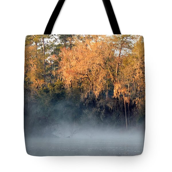 Tote Bag featuring the photograph Flint River 14 by Kim Pate