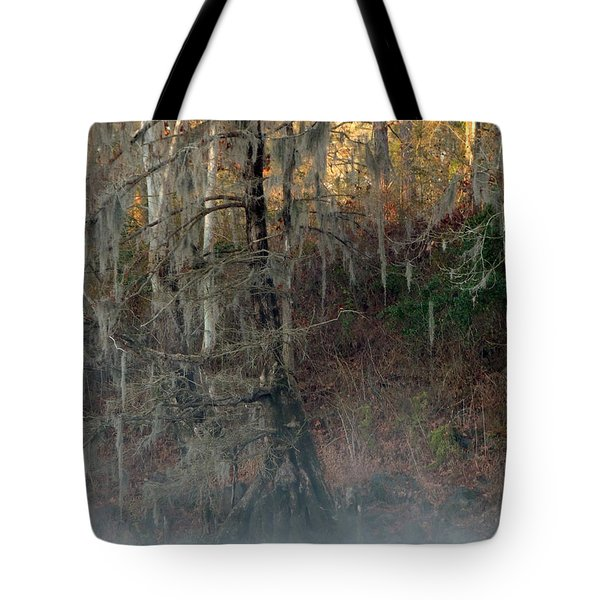 Tote Bag featuring the photograph Flint River 15 by Kim Pate